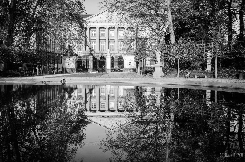 reflection of building in water black and white