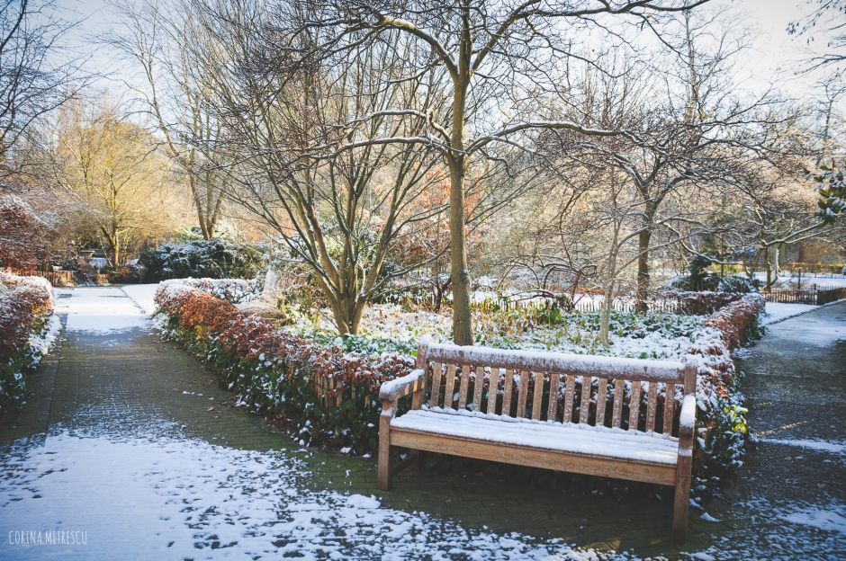 bench in tenbosch park