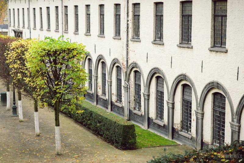 building in parc de l'abbaye