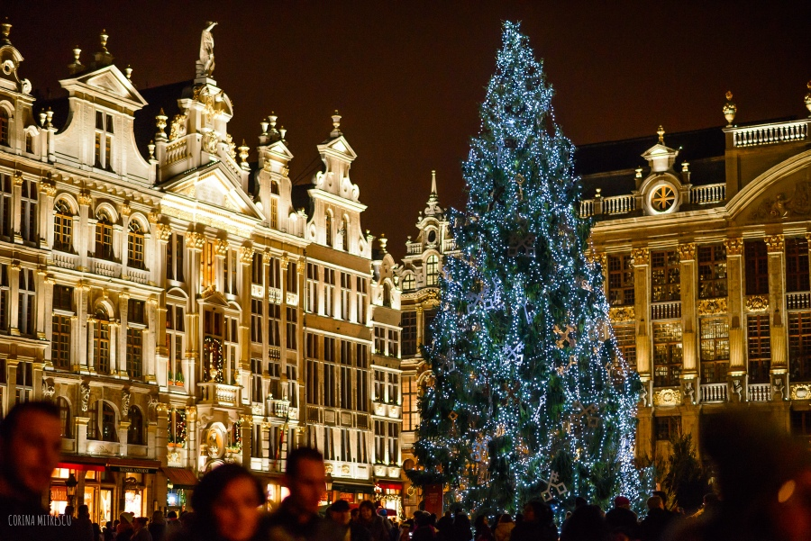 christmas tree 2014 brussels grand place