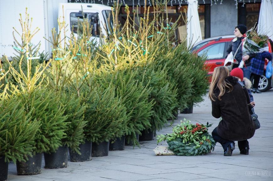 christmas tree market flagey
