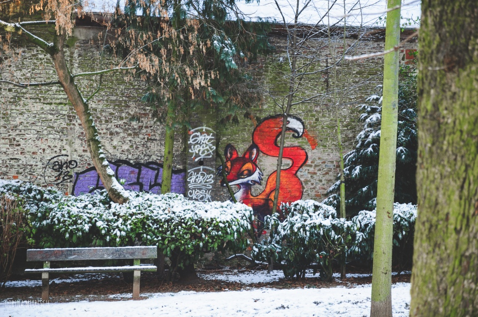 grafitty fox