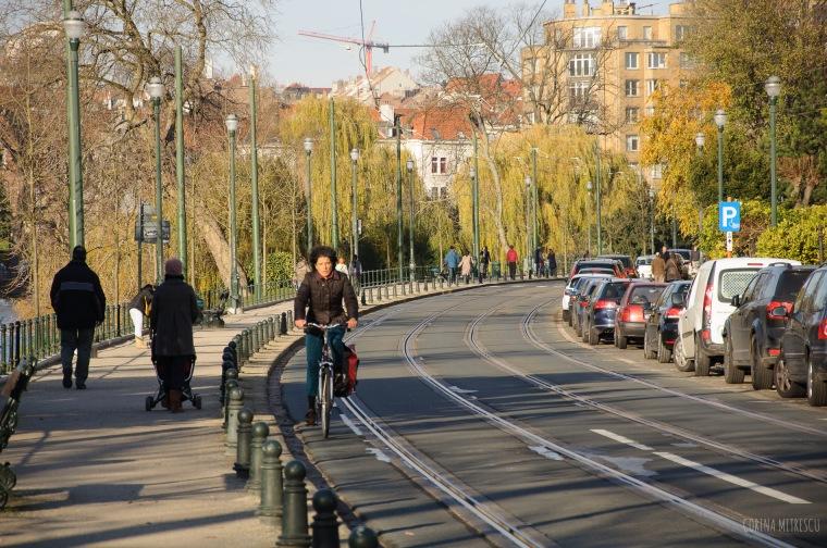 ixelles flagey street
