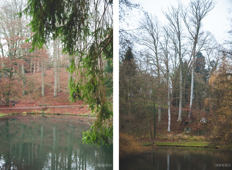 lake trees tournay solvay park brussels
