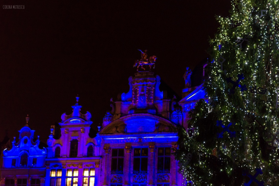 light show brussels 2014