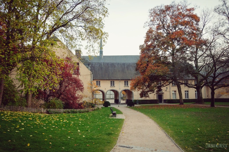 parc abbaye de la cambre ixelles