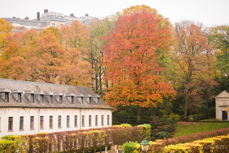 parc de l'abbaye in brussels belgium