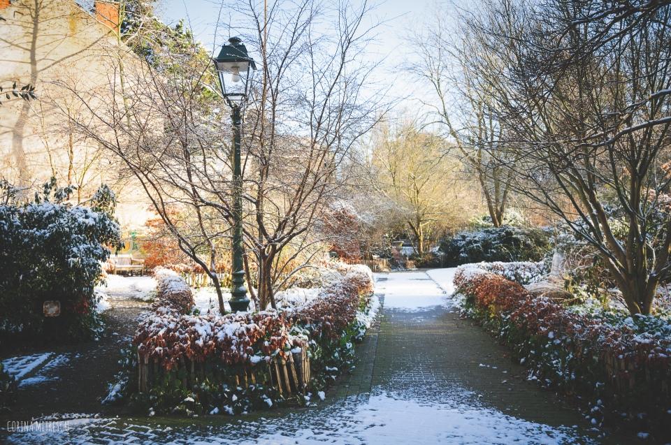 tenbosch park bruxelles
