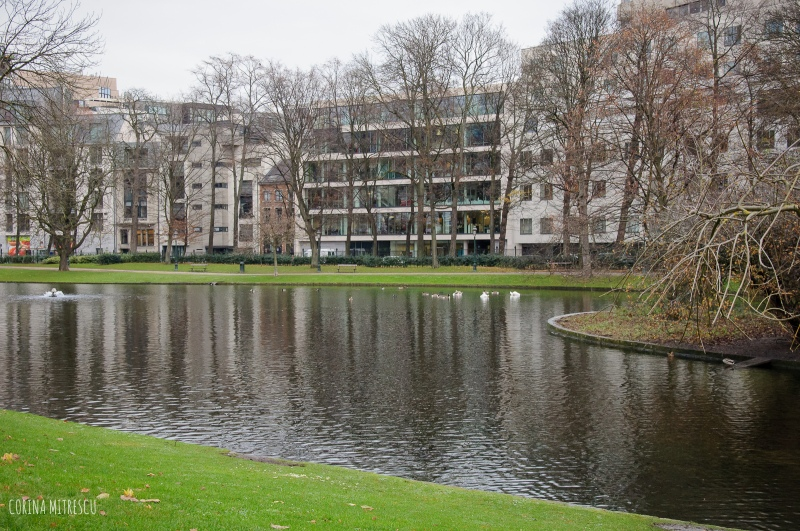 the lake in leopold park in brussels