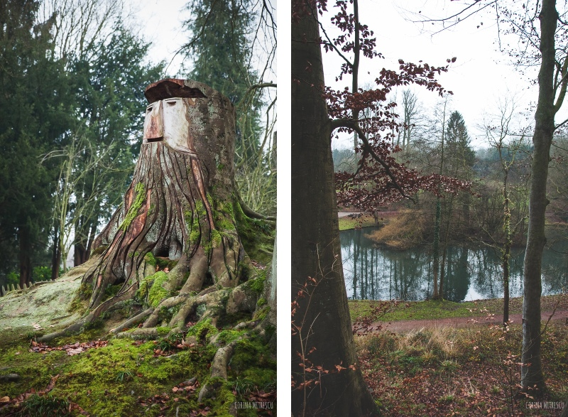 trees park tournay solvay