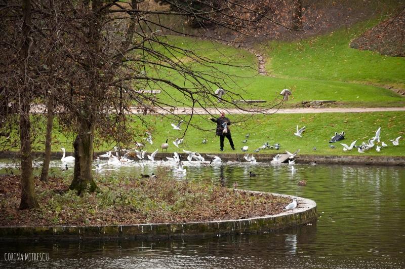 woman feeding bird in park