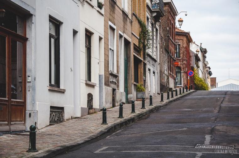 ixelles street houses