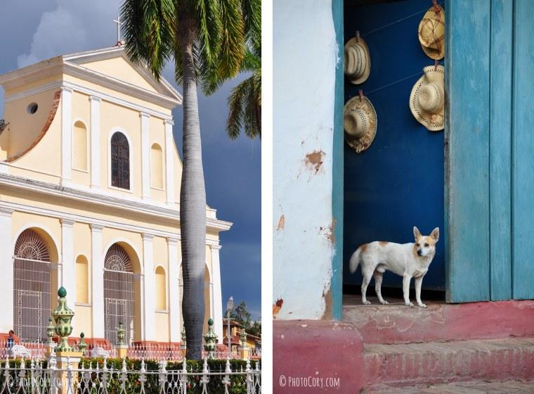 cuba trinidad cathedral dog