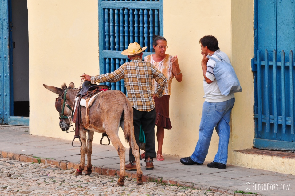 donkey trinidad cuba