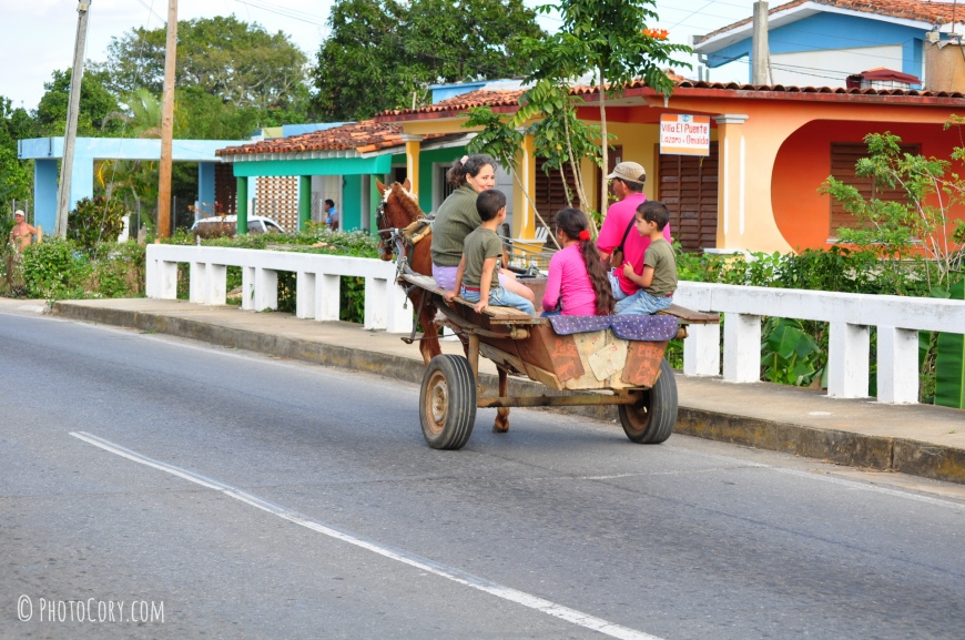horse and carriage vinales