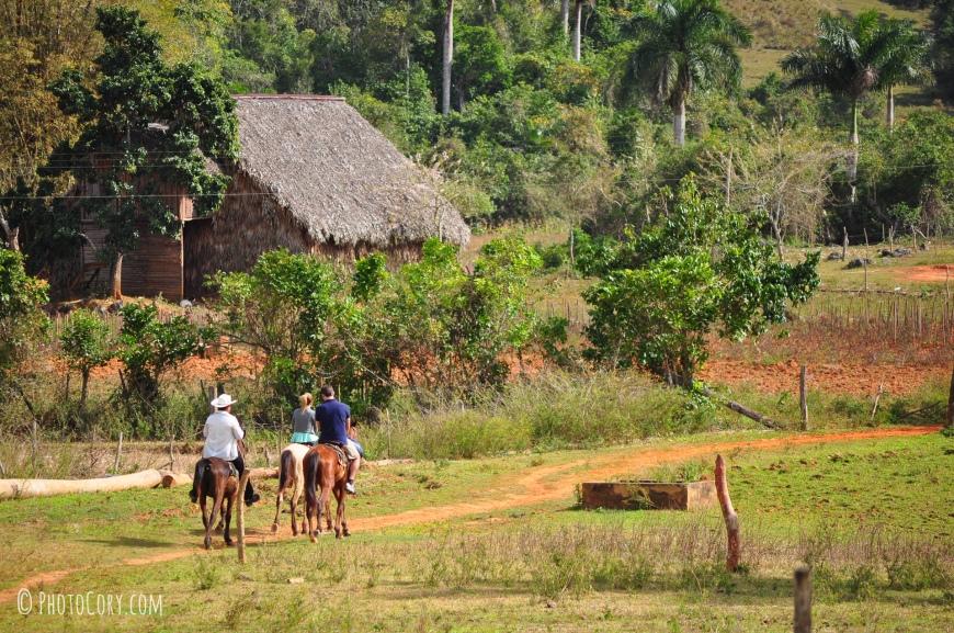 horseback riding in vinales