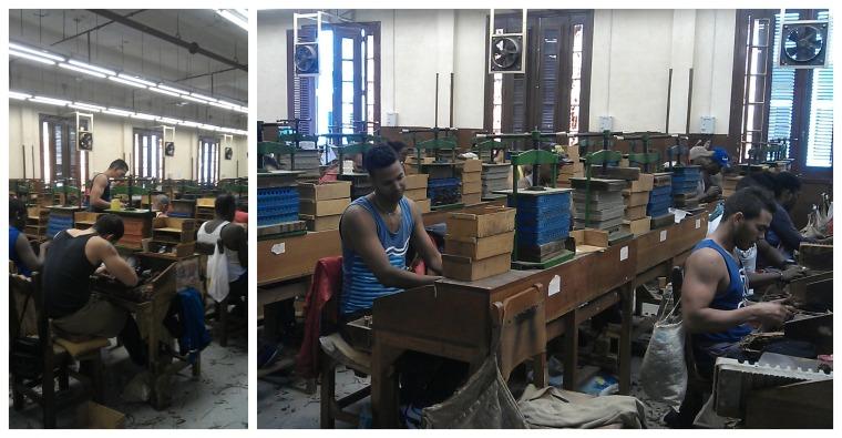 tobacco factory havana