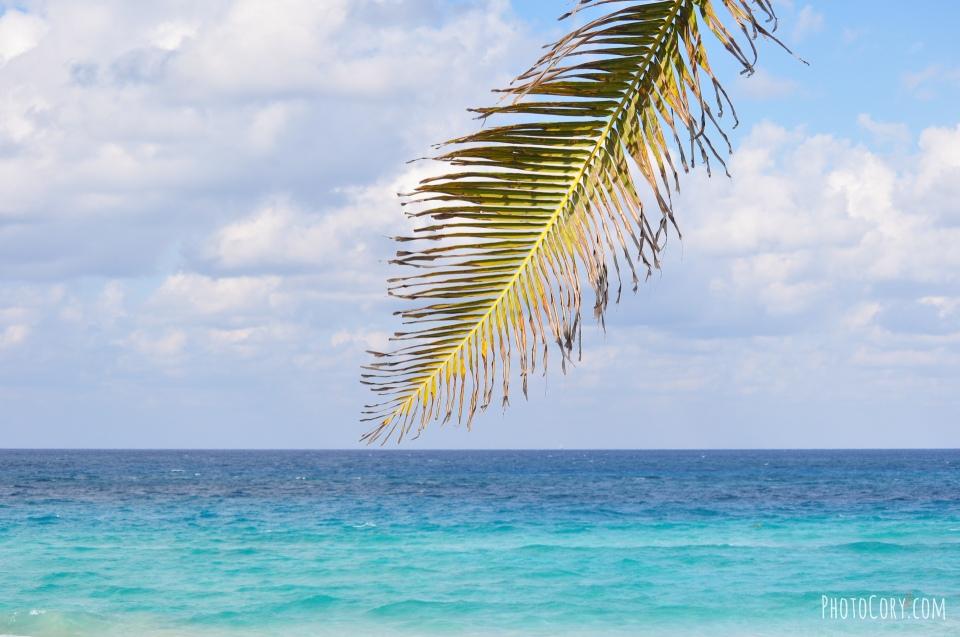 tropicoco beach havana