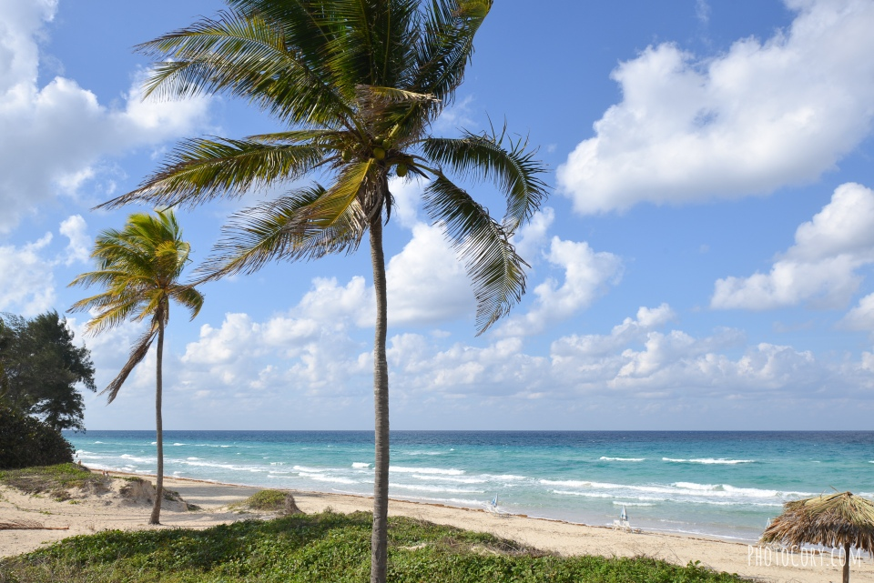 tropicoco havana beach
