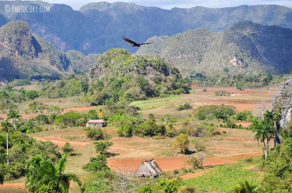 vinales landscape