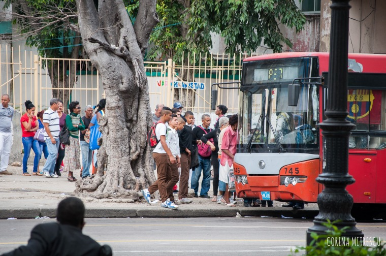 waiting in line for bus in havana