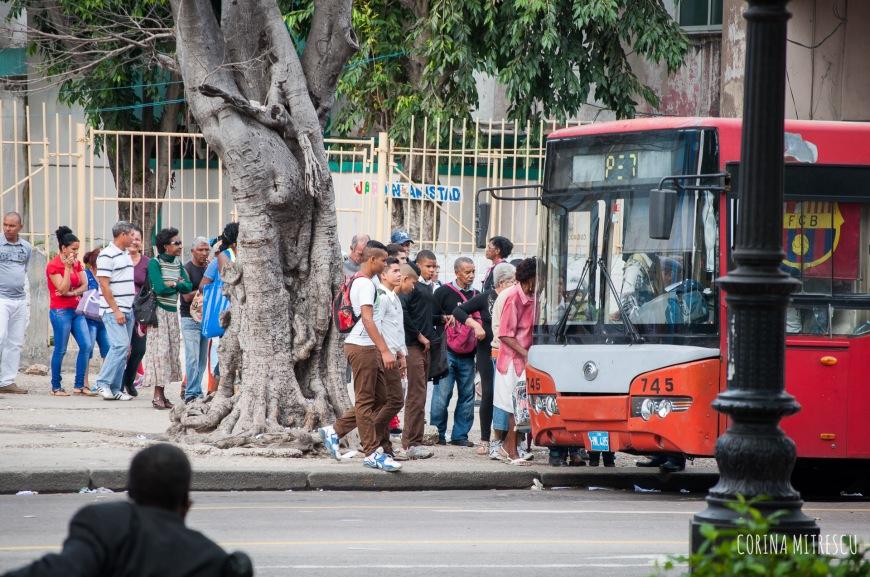 waiting in line for bus in havana