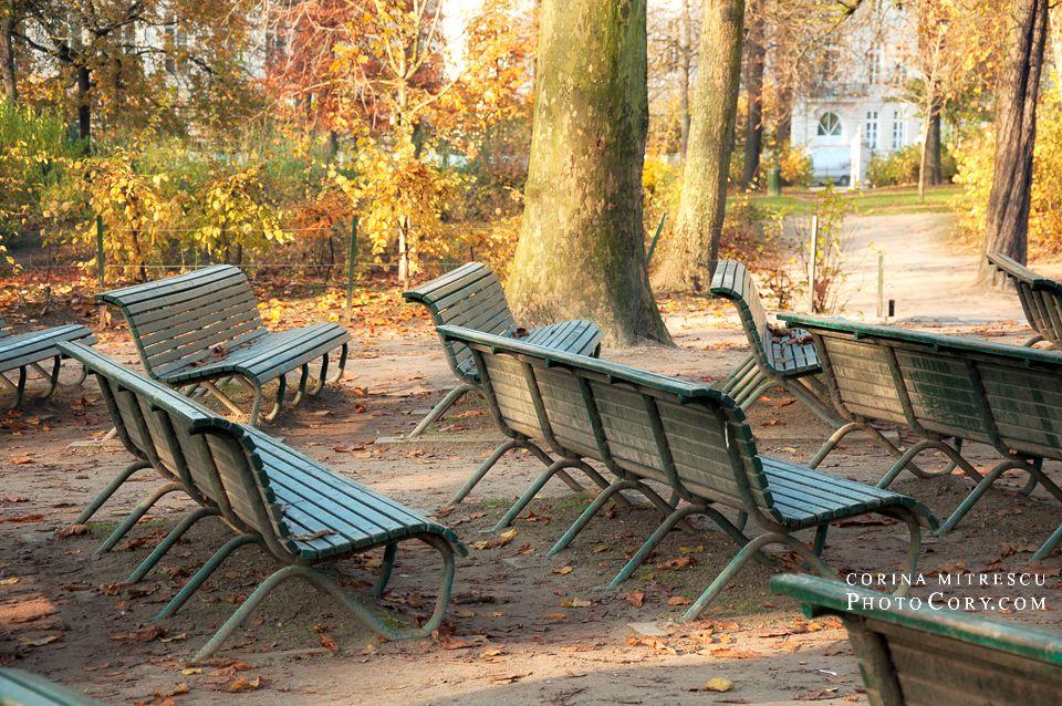 benches autumn photos