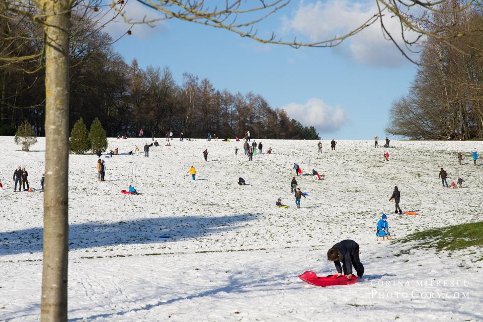 children sleigh la hulpe