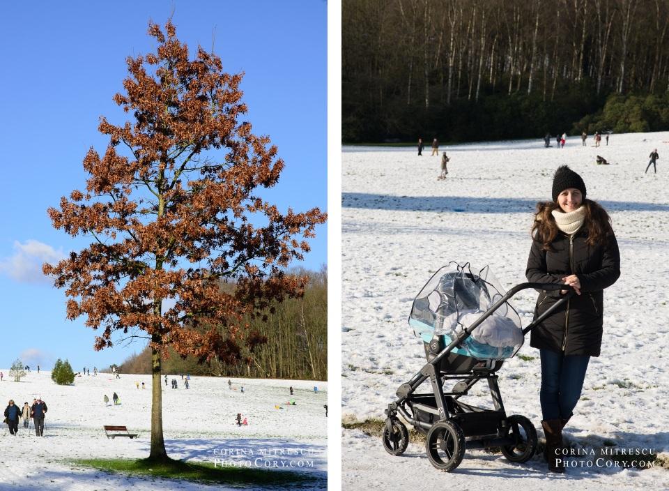 snow in belgium