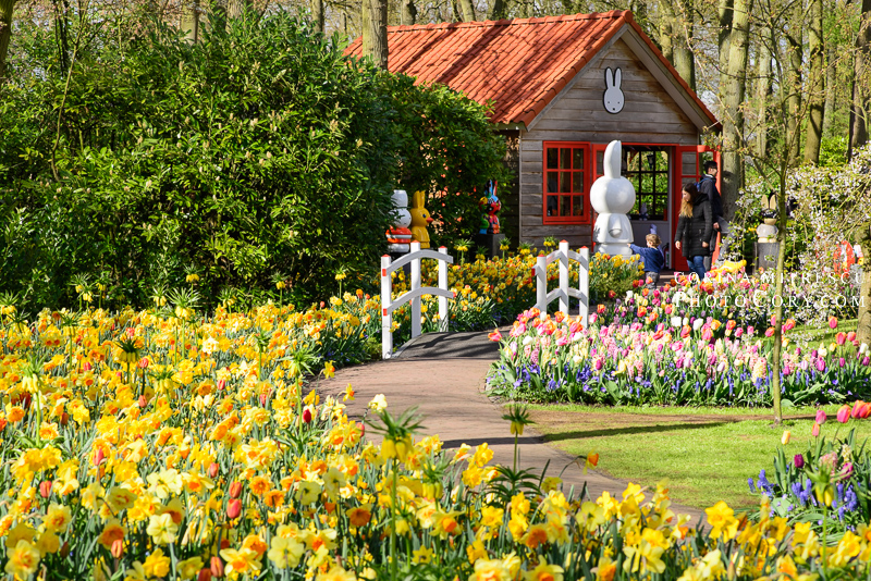 keukenhof little house