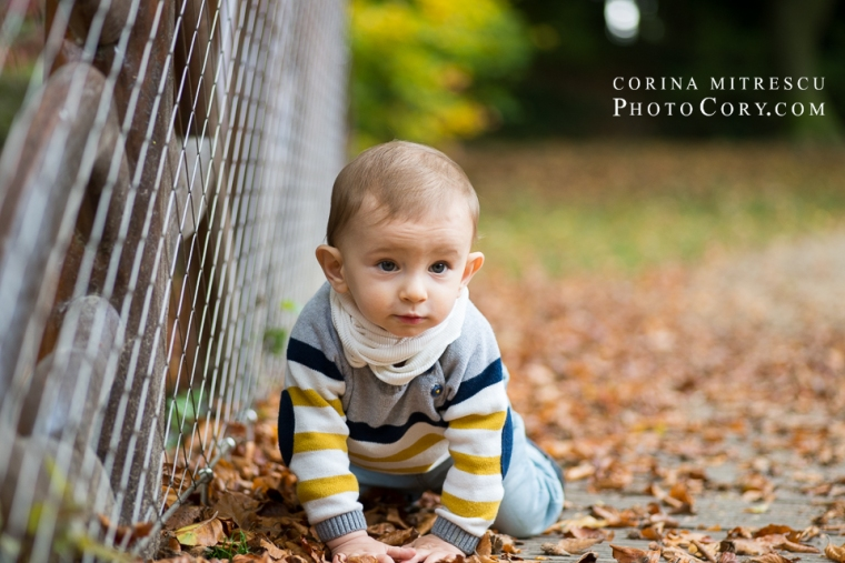 baby-crawling-at-11-months
