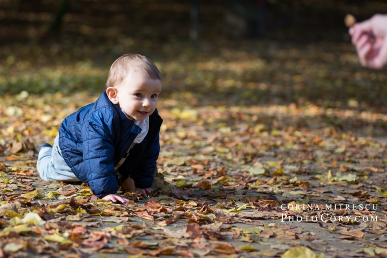 baby-crawling-in-parc