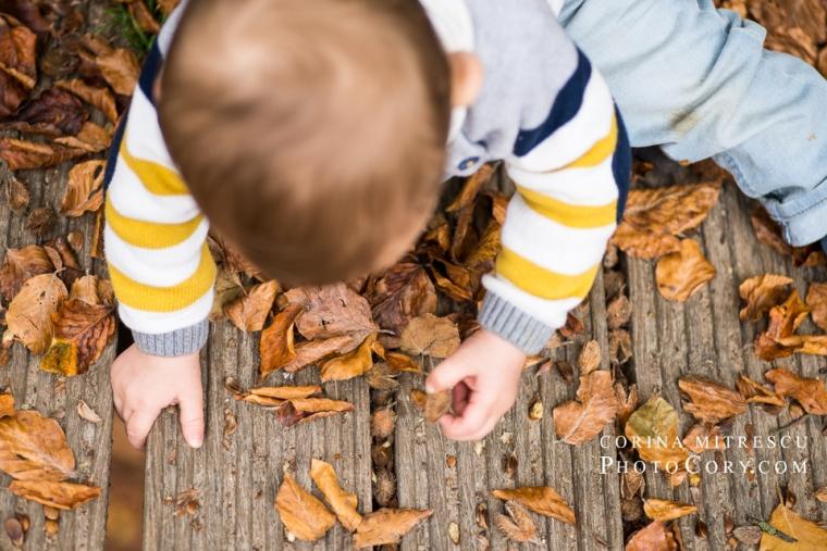 baby-leaves-autum