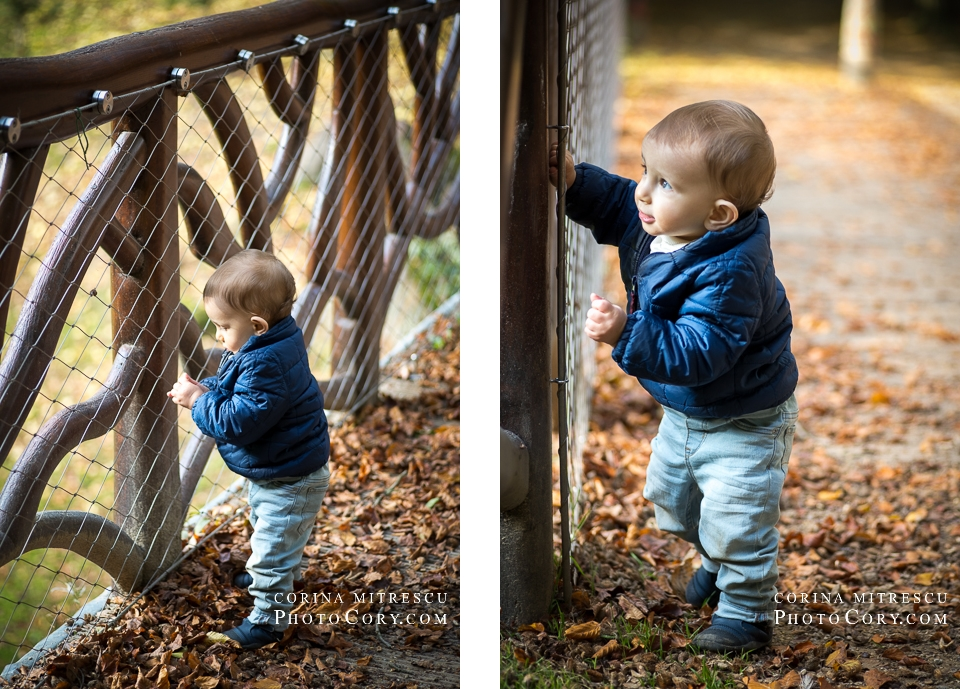 one-year-old-potrait-parc